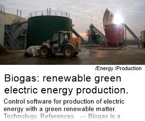 Biogas: renewable green electric energy production